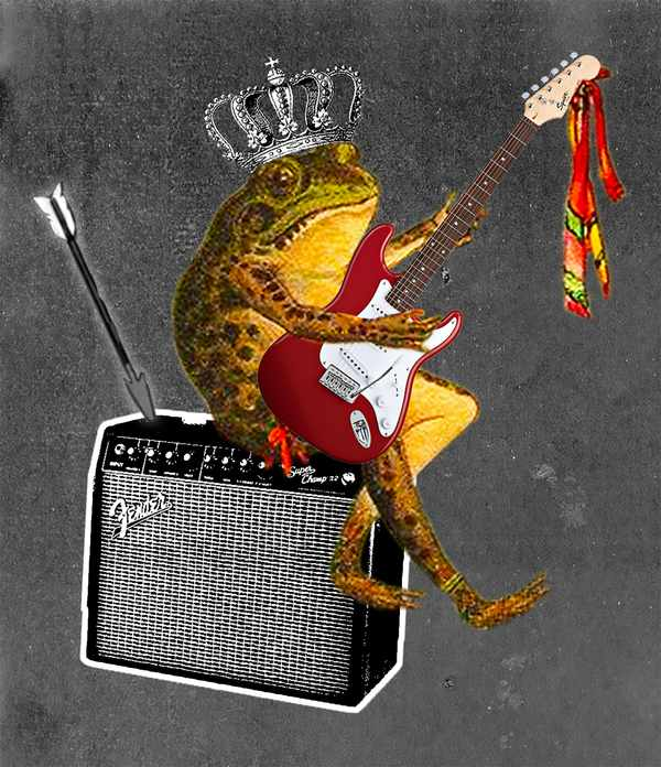 Picture for event The Frog Princess Punked, by Sally Pomme Clayton & The Swamp Girls